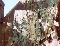 Старый ржавый строб в тюрьме Стоковое Изображение RF