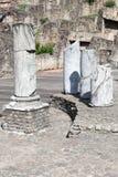 Старый римский театр Fourviere с базиликой Fourviere в Лионе Стоковые Изображения RF