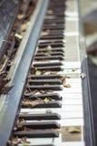 старый рояль Стоковые Фотографии RF
