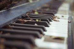 старый рояль Стоковые Изображения
