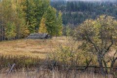 Старый сарай в осени Стоковая Фотография