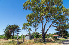 Старый сарай в Kyneton Стоковое фото RF