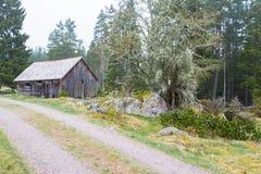 Старый сарай на дороге гравия Стоковая Фотография RF