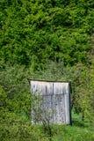 Старый сарай около леса стоковое фото rf
