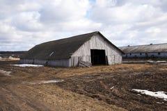 Старый сарай Стоковые Фото