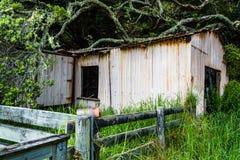 старый сарай Стоковое Фото