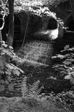 Старый стан Стоковая Фотография RF