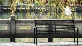 Старый стенд с рекой и дерево на предпосылке стоковая фотография rf