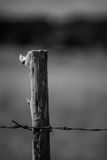 Старый столб загородки в черно-белом Стоковая Фотография RF