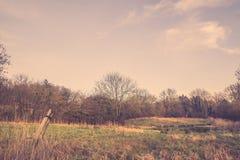 Старый столб загородки на поле Стоковые Изображения RF