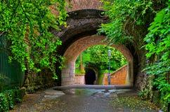 Старый тоннель в саде Стоковая Фотография RF