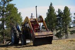 Старый трактор Форда 800 Стоковые Фотографии RF