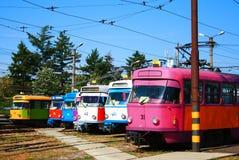 старый трам Стоковые Фотографии RF