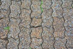 Старый тротуар текстуры кирпича Стоковые Фотографии RF