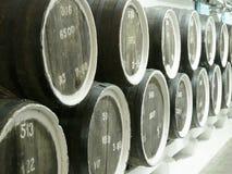 Старый дуб несется строка на погребах винодельни сбор винограда предпосылки красивейший конец вверх Стоковое Изображение