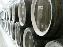 Старый дуб несется строка на погребах винодельни сбор винограда предпосылки красивейший конец вверх Стоковое Изображение RF