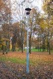 Старый уличный фонарь в парке осени Старый уличный фонарь в парке Яркие цвета, дерево с желтыми листьями, сравнивают черные ветви стоковая фотография