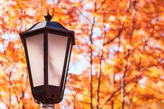Старый уличный фонарь в парке на осени Стоковое Изображение RF