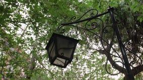 Старый фонарик в парке сток-видео