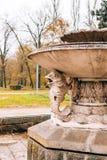 Старый фонтан Архитектура Хорватии и Черногории, Балканов стоковое фото