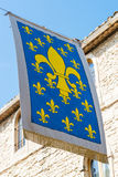 Старый флаг fleur de lys, Франция Стоковые Изображения RF