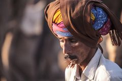 Старый человек Rajasthani с тюрбаном Фестиваль-Pushkar Стоковое фото RF
