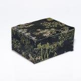 Старый черный ящик Стоковая Фотография