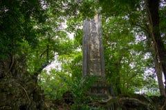 Старый штендер руин в джунглях стоковая фотография