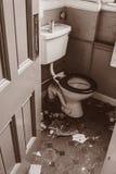Старый ababdoned туалет Стоковые Фотографии RF