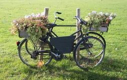 Старый bike с цветками Стоковое фото RF