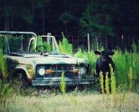 Старый Ford Bronco стоковые фото