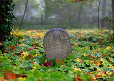 Старый Gravestone Стоковые Фотографии RF