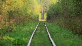 старый railway покинутая станция Overgrown тропы видеоматериал