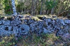 Старый stonewall предусматриванный во мхе в шведском лесе стоковые фотографии rf