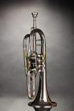 старый trumpet Стоковые Фотографии RF