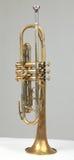 старый trumpet стоковое фото