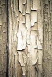 Старыми деревянными стена покрашенная домами крупного плана eyedroppers высокий разрешения взгляд очень тонизировано Стоковая Фотография