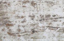 Старыми деревянными стена покрашенная домами крупного плана eyedroppers высокий разрешения взгляд очень Селективное focu Стоковое Фото