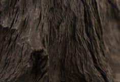 4 старых деревянных доски на белой предпосылке старая древесина планки Стоковое Фото