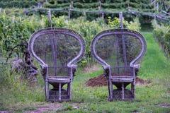 2 старых заплетенных деревянных стуль Стоковое фото RF