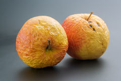 2 старых яблока Стоковые Изображения