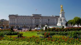 Статическая съемка Букингемского дворца в Лондоне сток-видео