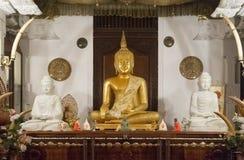 Статуи Будды внутри виска зуба Стоковые Фото
