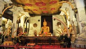 Статуи Будды внутри виска зуба Стоковое Изображение