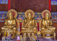 Статуи Будды дерева Стоковые Фотографии RF