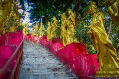 Статуи в ряд на 10 тысяч монастыре Buddhas в олове Sha, Гонконге, Китае стоковая фотография rf