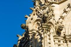 Статуи горгульи на стенах собора Нотр-Дам в Париже Стоковые Изображения