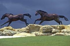 Статуи идущих лошадей, FL Стоковая Фотография RF