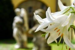 статуи лилии стоковое изображение