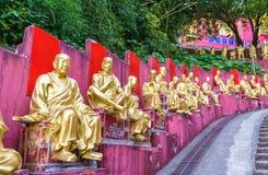 Статуи на пути к 10 тысяч монастырю Buddhas в Гонконге Стоковые Фото
